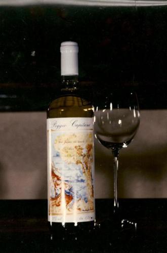 Rascioni-e-Cecconello-bottiglia-di-Poggio-Capitana-Bianco